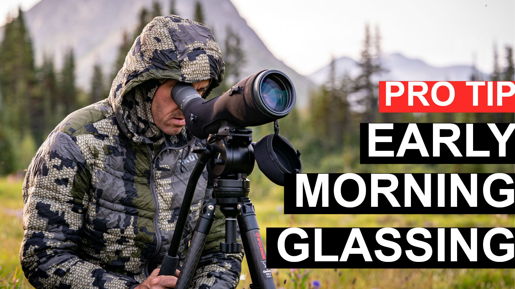 ProTip: Early Morning Glassing