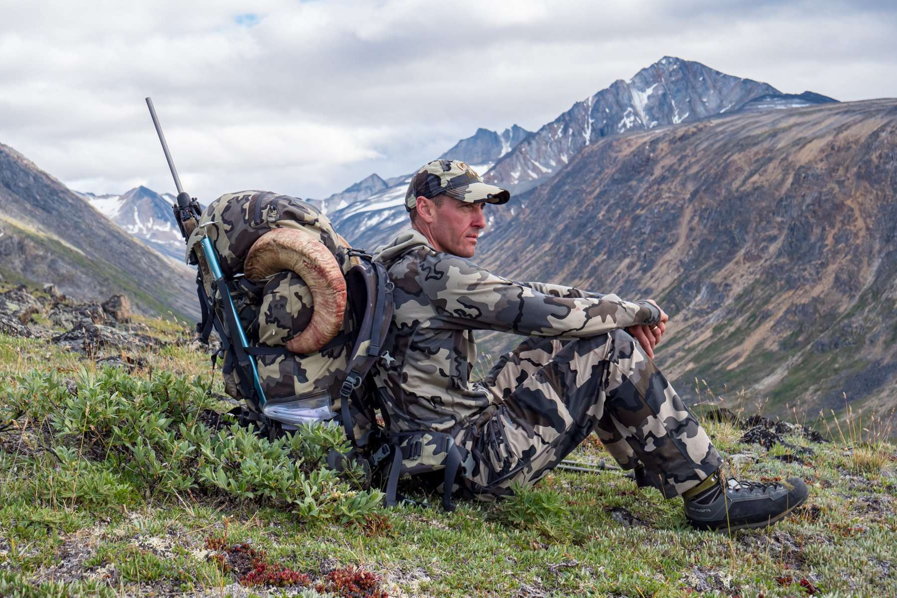 Off the Beaten Path: Dall's Sheep